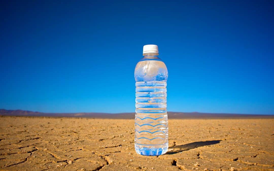 How Nestle Makes Billions of Dollars Every Year Selling Bottled Water It Pays Practically Nothing For